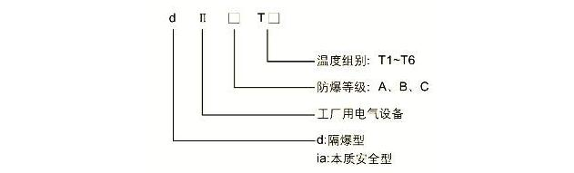 隔爆型一体化温度变送器(热电偶,热电阻)     1. 防爆标志:diibt4