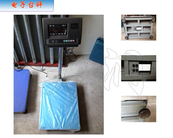 产品名称:   TCS-SR   电子计重台秤   TCS-SR   电子计...